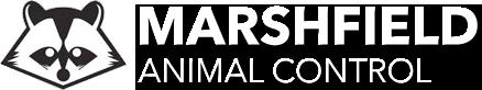 Marshfield Animal Control